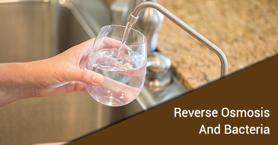 Reverse Osmosis And Bacteria