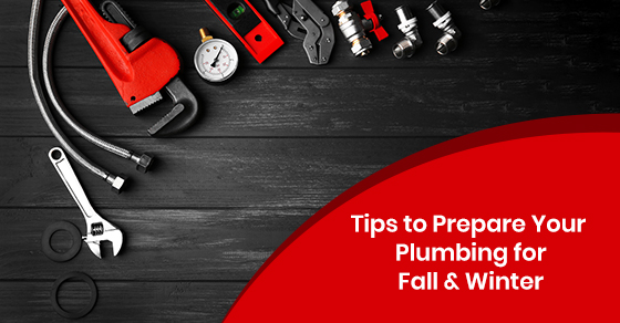 Protection for plumbing system during winter