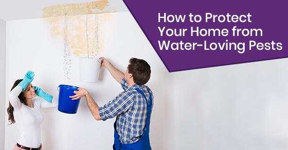 How to repair water leaks