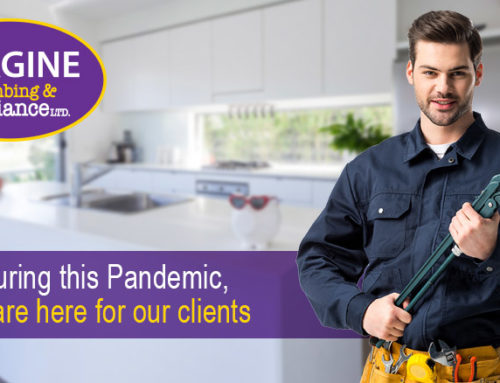 During this Pandemic, We are here for our clients